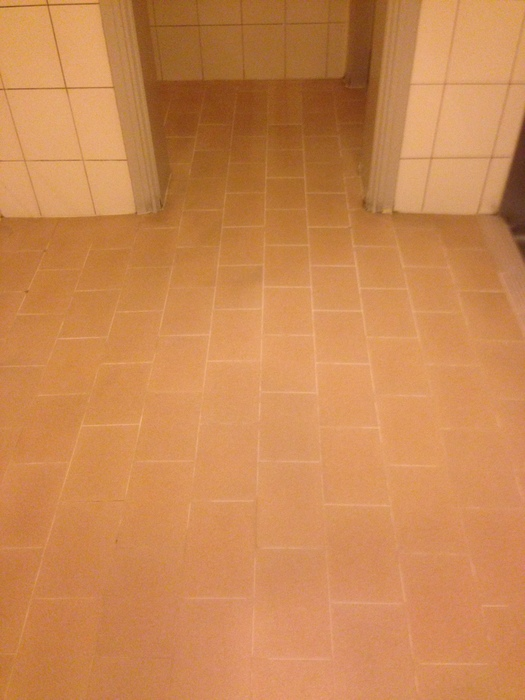 Tiles and grout cleaned & restored