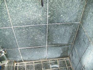 Serpentile tiles dull and etched.Some shampoos and cleaning agents can cause this